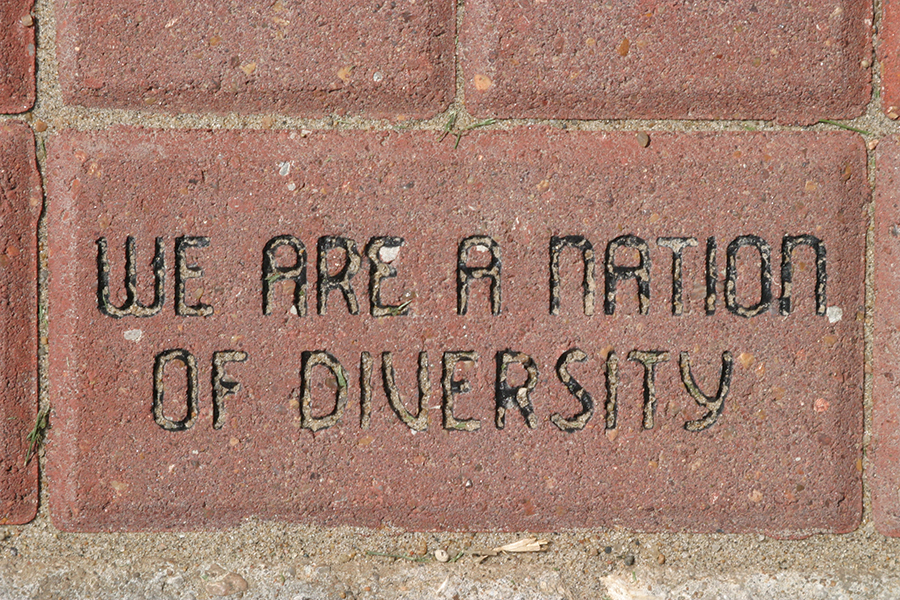 We are a nation of diversity.
