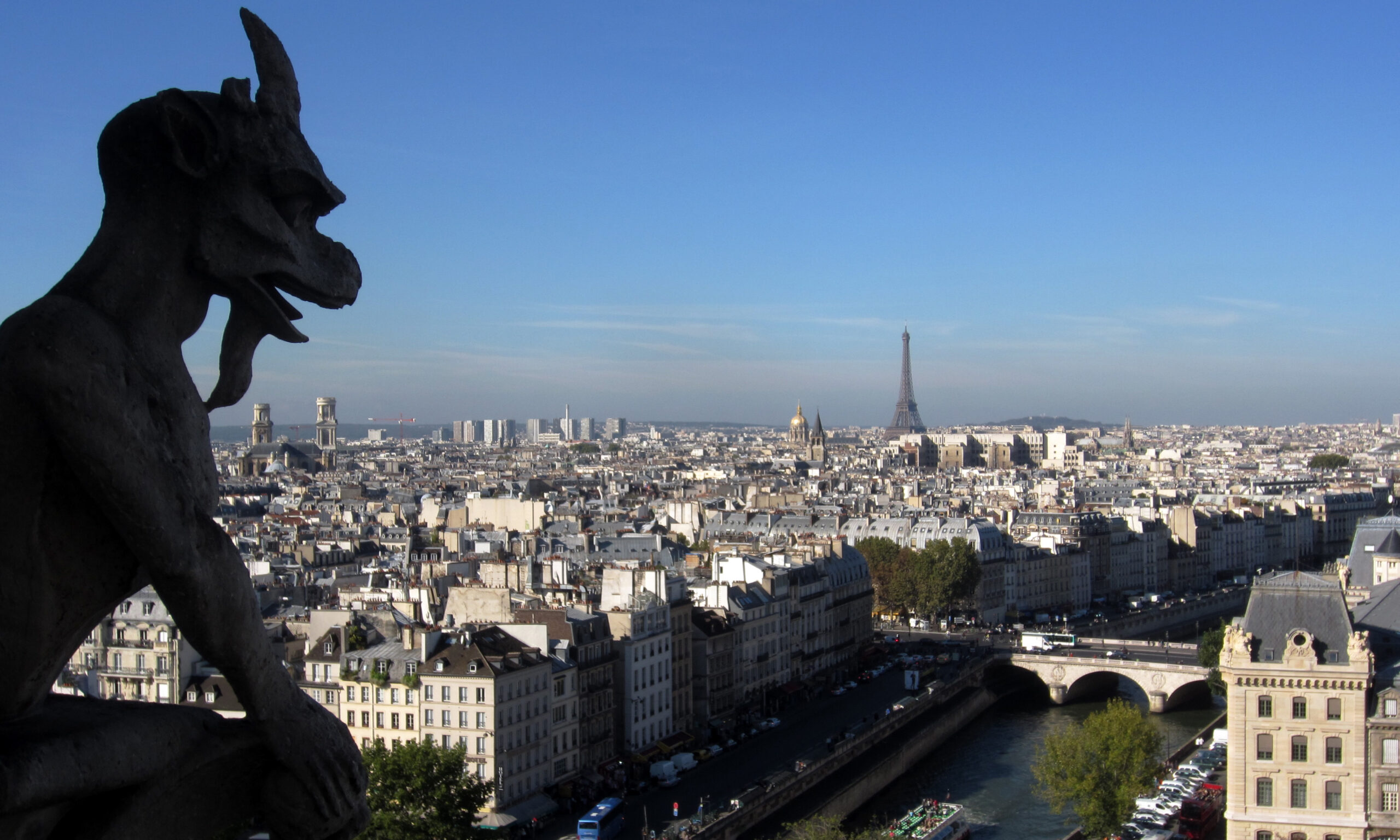Gargoyle looking over Paris.