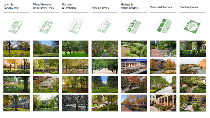 Planting Typologies:Decoding the DNA of the Drury Campus Landscape