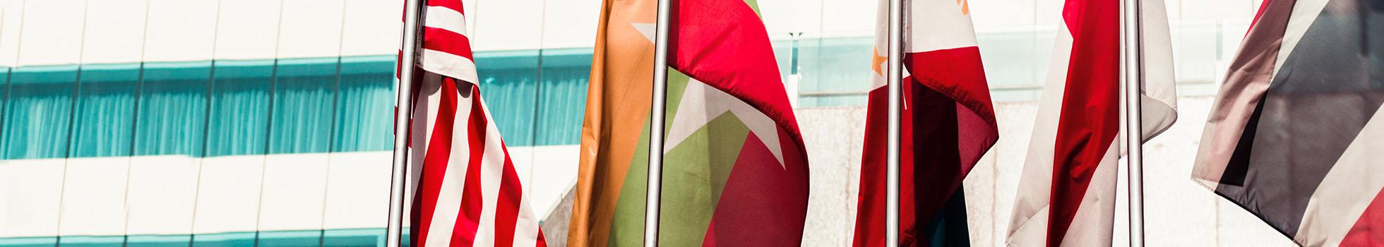 International flags on a pole.